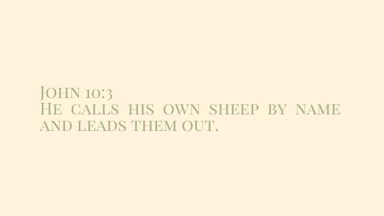 John 10:3