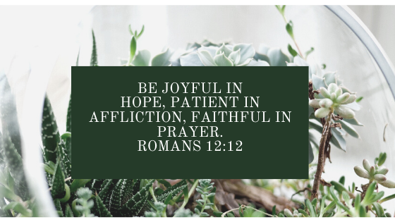 Be joyful in hope, patient in affliction, faithful in prayer. Romans 12_12